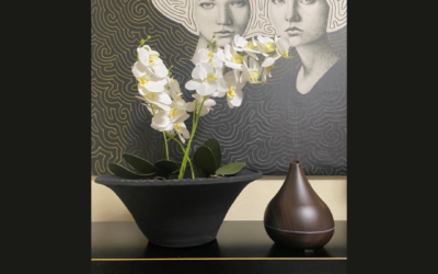 Fragrance your home with Smellacloud Diffusers